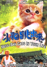 Neco-Ban Cats In Your Life (All Region DVD)(Japanese Movie)