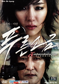 Hindsight (Korean Movie DVD)
