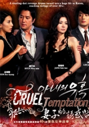 Cruel Temptation (All Region)(Korean TV Drama) (Award-Winning)