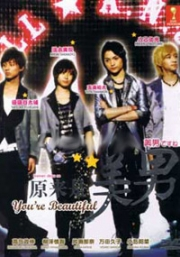 You are beautiful (All Region DVD)(Japanese TV Drama)