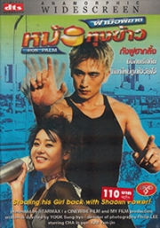 Iron Palm (Korean Movie DVD)