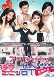 Wedding Scheme (All Region DVD)(Korean TV Drama)