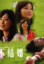 Wonderful Single Life (All Region DVD)(Japanese TV Drama)