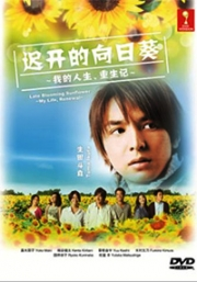 Late Blooming Sunflower (All Region DVD)(Japanes Drama)