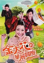 Princess Stand in (All Region DVD, 7DVD)(Chinese TV Drama)